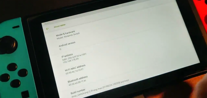 Android ported to the Nintendo Switch!